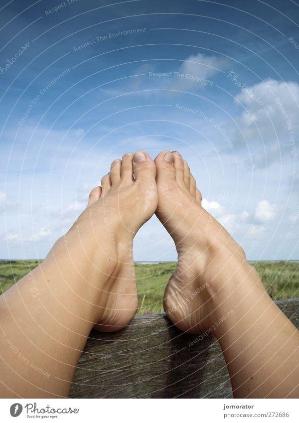 Füße - Himmel - Holz Mensch Frau Himmel Natur Sommer Wolken Erwachsene Erholung Umwelt Landschaft feminin Fuß Pause Barfuß Zehen stagnierend
