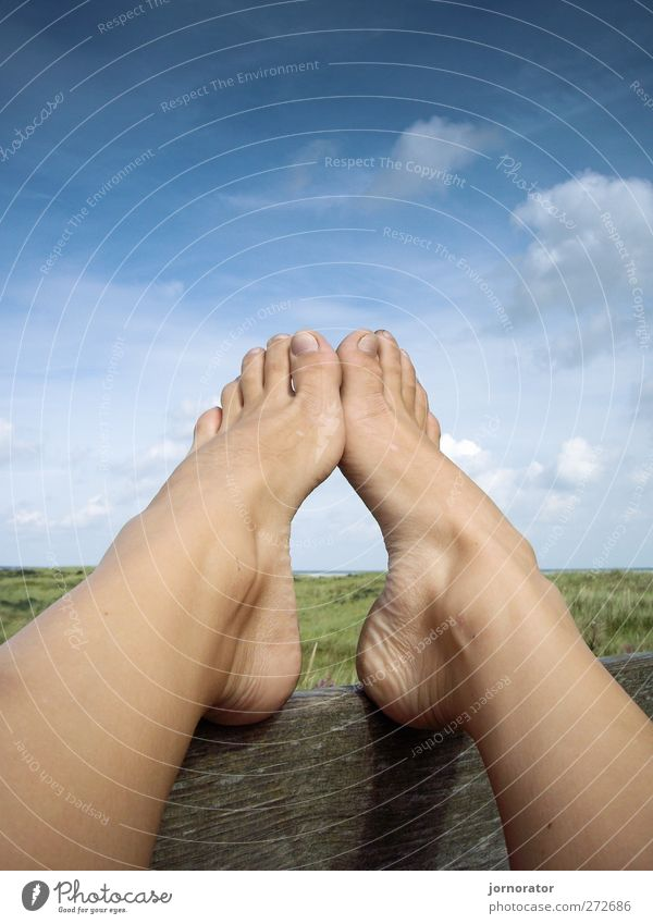 Füße - Himmel - Holz Mensch Frau Natur Sommer Wolken Erwachsene Erholung Umwelt Landschaft feminin Fuß Pause Barfuß Zehen stagnierend