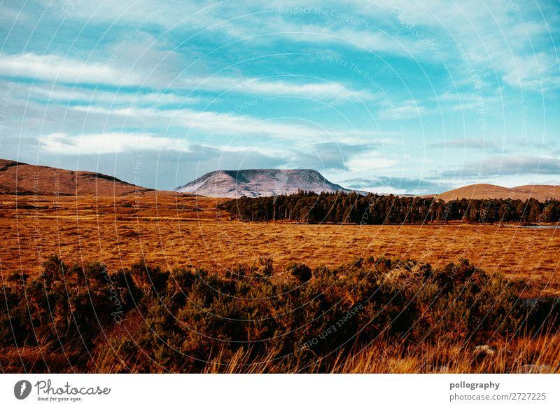 Nature Ferien & Urlaub & Reisen Tourismus Ausflug Abenteuer Ferne Freiheit Sightseeing Nordirland Umwelt Landschaft Erde Luft Himmel Wolken Herbst Klima