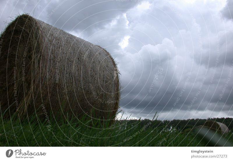Stroh- und Wolkenballen Strohballen Heuballen bedrohlich dunkel Gras Wiese Unwetter grau