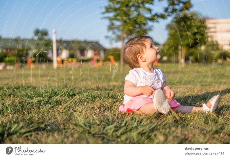 Glückliches kleines Mädchen beim Spielen, das auf einem Rasenplatz sitzt. Lifestyle Freude schön Freizeit & Hobby Sommer Garten Kind Mensch Baby Kleinkind