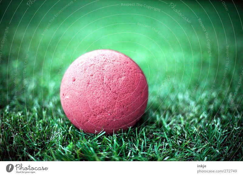 Der Ball ist rund. Spielen Gras liegen nah grün rot Freizeit & Hobby Vignettierung Farbfoto Außenaufnahme Nahaufnahme Menschenleer Tag Licht Kontrast