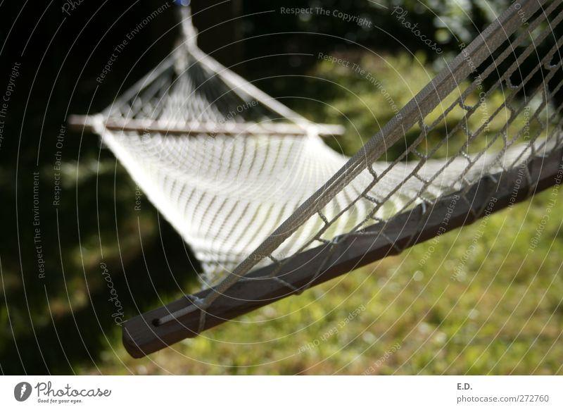 Einfach mal die Seele baumeln lassen Ferien & Urlaub & Reisen Freiheit Sommer Garten Umwelt Natur Erde Wiese Hängematte Erholung genießen hängen liegen