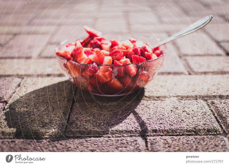Erdbären Sommer rot Gesundheit Frucht Ernährung Lebensmittel süß Gesunde Ernährung lecker Bioprodukte Schalen & Schüsseln Erdbeeren Löffel