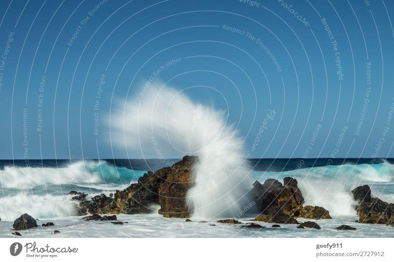 Kraftvoll Ferien & Urlaub & Reisen Tourismus Ausflug Abenteuer Ferne Freiheit Strand Meer Insel Wellen Umwelt Natur Wasser Himmel Wind Küste Bucht