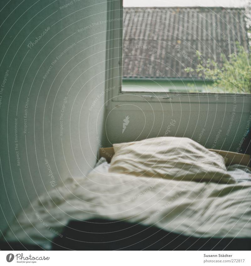 Hiddensee | Schloß Poseritz Dach schlafen Bettwäsche Fenster DDR alt Aussicht analog Mittelformat Kopfkissen Bettdecke Wand ruhen Stadtteil Gedeckte Farben