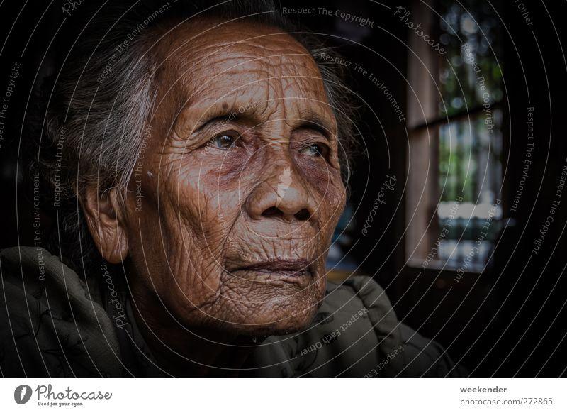 Tief in Gedanken Mensch feminin Frau Erwachsene Weiblicher Senior Großmutter Kopf 1 60 und älter grauhaarig Gefühle Stimmung gehorsam Güte Freundlichkeit ruhig