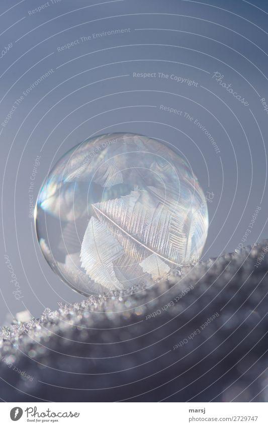 Auf die schiefe Bahn geraten Schnee Seifenblase Kristallstrukturen Kugel außergewöhnlich dünn authentisch einzigartig Reinheit bizarr rein Neigung gefroren