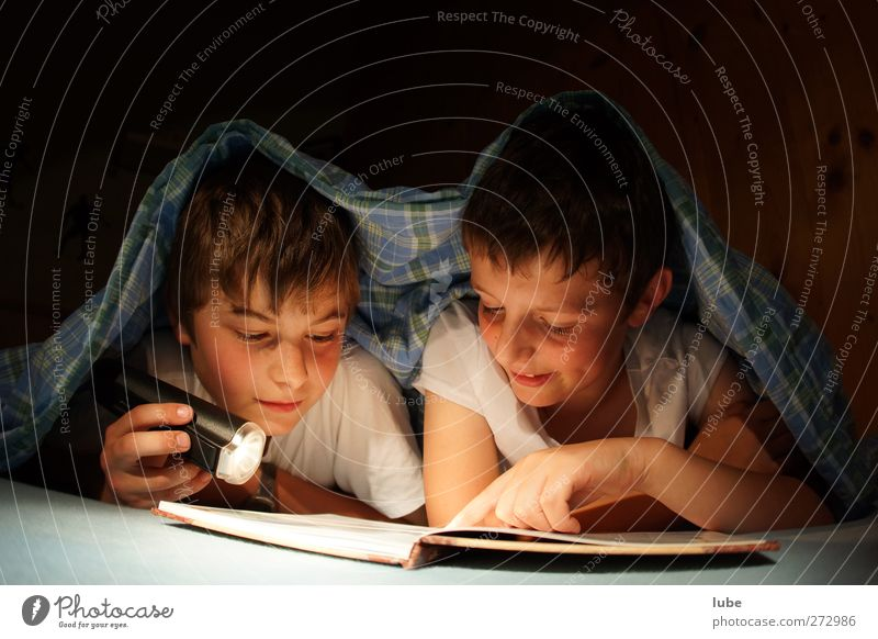 Gute Nachtgeschichte Bildung lernen Schüler Mensch Kind 2 8-13 Jahre Kindheit Buch lesen Neugier Taschenlampe schlafen Freundschaft Farbfoto Textfreiraum oben