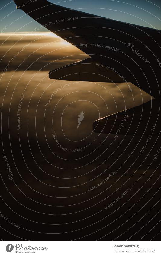Teil eines Flugzeuges in der Luft reisen Reise Flugzeugteile Flugzeugausblick Wolken Sonnenuntergang Tourismus