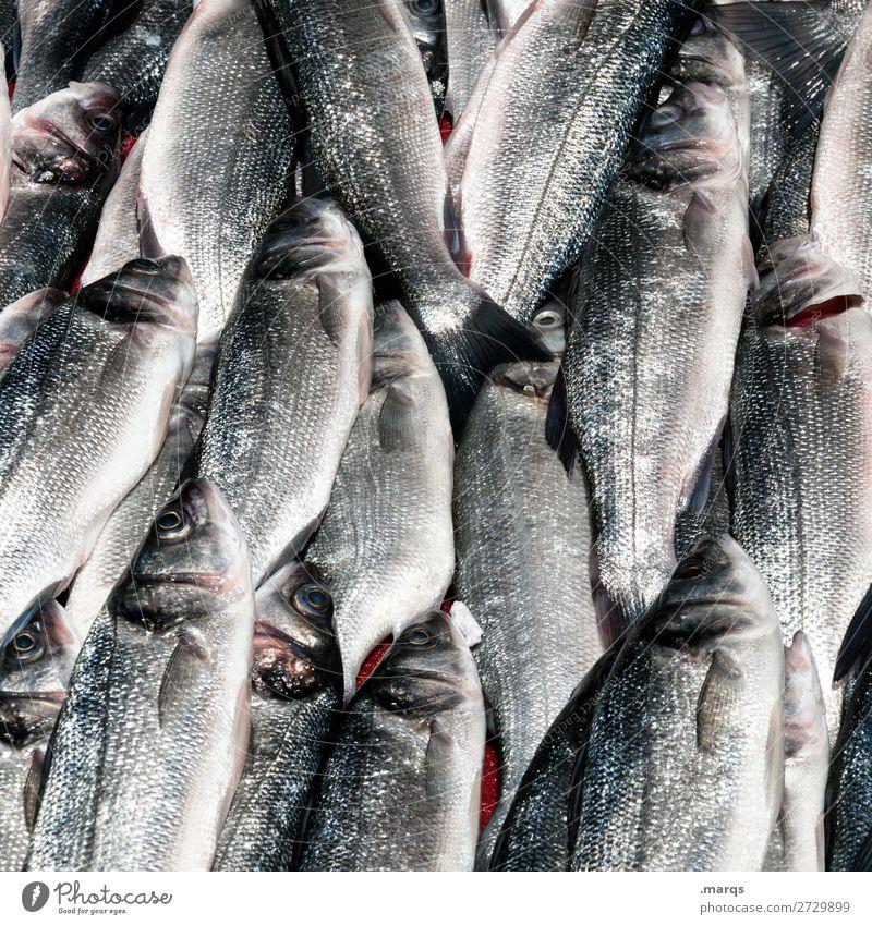 Freitags gibt´s Fisch Handel Fischmarkt Markt frisch viele Ernährung Istanbul Farbfoto Außenaufnahme Nahaufnahme Muster Menschenleer Textfreiraum links