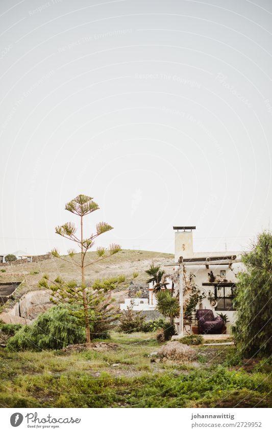 lanzarote Ferien & Urlaub & Reisen Freizeit & Hobby Frieden Glück Idylle einzigartig Natur Umwelt Häusliches Leben Zufriedenheit Reisefotografie Haus Wohlgefühl