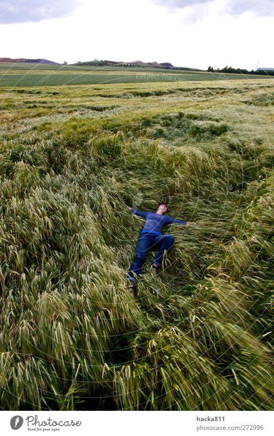 Ein Bett im Kornfeld Mensch Natur Jugendliche Pflanze ruhig Erwachsene Erholung Umwelt Ferne Landschaft feminin Glück Junge Frau Wetter Zufriedenheit Feld