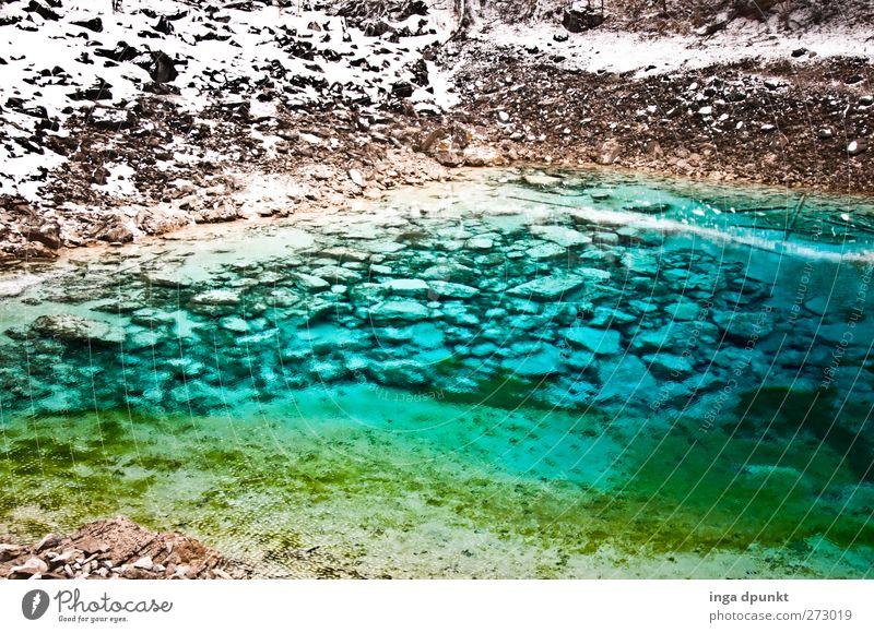 Alles klar II Natur blau Wasser Pflanze Winter Umwelt Landschaft kalt Schneefall Eis Erde Felsen Klima außergewöhnlich glänzend Urelemente