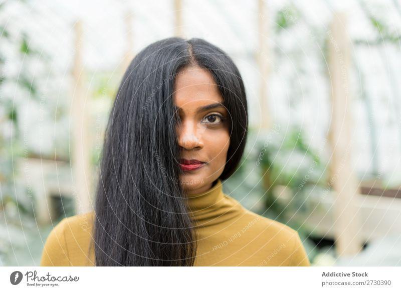 Hübsche indische ethnische Frau im Treibhaus hübsch Gewächshaus Natur grün Stil Blick in die Kamera urwüchsig Pflanze Gärtner schön Jugendliche Garten Lifestyle