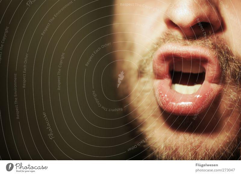 DEUTSCHLAND DEUTSCHLAND Mensch maskulin Mund Lippen 1 atmen sprechen singen Bart Barthaare Bartstoppel Nase Farbfoto Innenaufnahme Männermund unrasiert