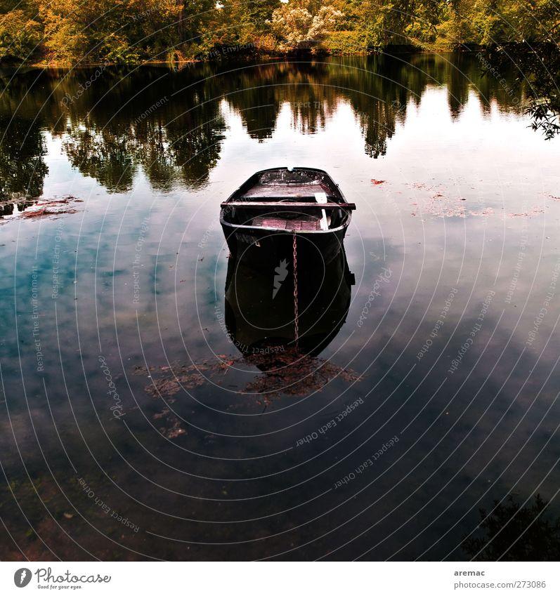 Ruheplatz Natur Landschaft Wasser Himmel Sommer Baum Wald Seeufer Teich Fischerboot Ruderboot dunkel ruhig Farbfoto Gedeckte Farben Außenaufnahme Menschenleer