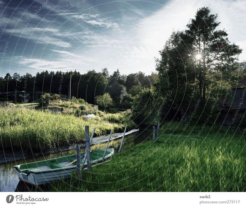 Stille Tage in Bohuslän Umwelt Natur Landschaft Pflanze Wasser Himmel Horizont Sonne Sommer Klima Wetter Schönes Wetter Baum Sträucher Grünpflanze Wiese Wald