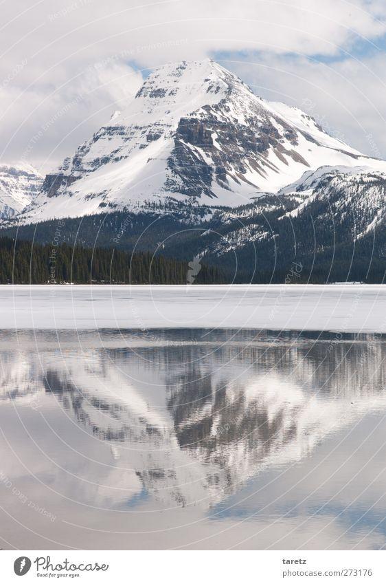 Spiegelberg Ferien & Urlaub & Reisen Ferne Freiheit Umwelt Natur Wolken Frühling Schönes Wetter Berge u. Gebirge Rocky Mountains Gipfel Schneebedeckte Gipfel