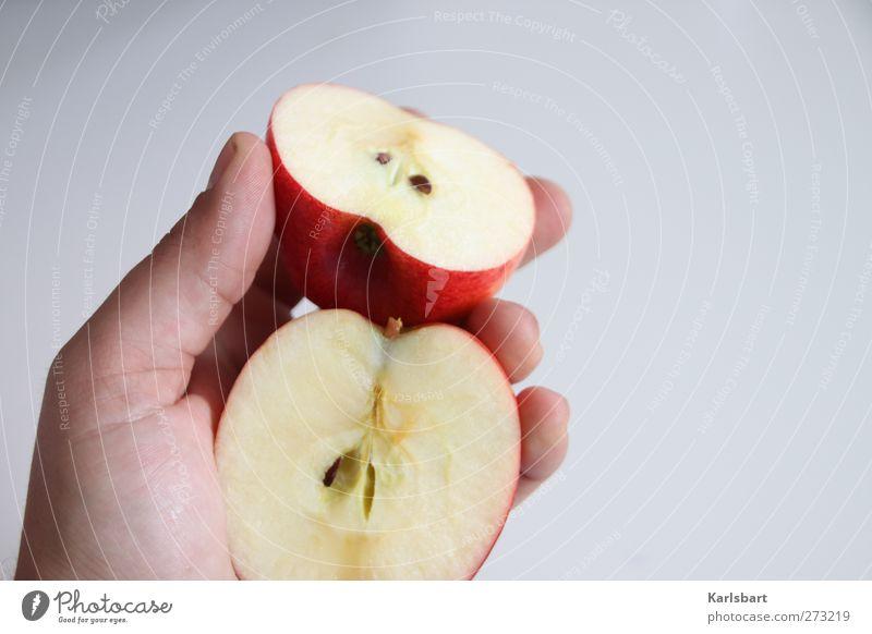 stück apfel? Mensch Natur Hand Sommer Umwelt Leben Herbst Gesundheit Lebensmittel Gesundheitswesen Ernährung Lifestyle Häusliches Leben Gesunde Ernährung Apfel Teile u. Stücke
