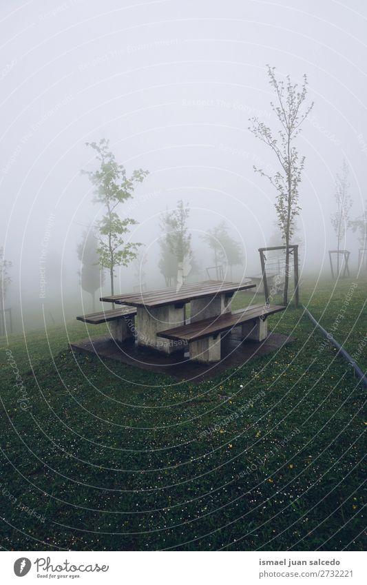 Ferien & Urlaub & Reisen Natur Farbe grün Landschaft Baum Erholung ruhig Wald Berge u. Gebirge Herbst Nebel Platz Spanien Gelassenheit Ausflugsziel