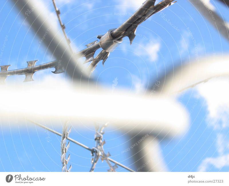 Gefangen Himmel blau Wolken Metall Freizeit & Hobby gefährlich Spitze gefangen Draht durcheinander Justizvollzugsanstalt Stacheldraht