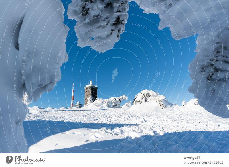 Brockengipfel Natur Landschaft Winter Schönes Wetter Eis Frost Schnee Berge u. Gebirge Harz Gipfel Schneebedeckte Gipfel kalt blau braun weiß Querformat