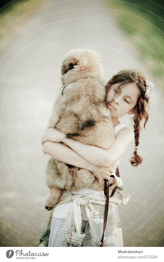 junges Mädchen trägt ihren Welpen Hund Mensch Kind schön Tier Landschaft feminin Leben Wege & Pfade Tierjunges träumen gehen Feld Kindheit natürlich