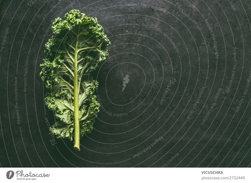 Grünkohl Blatt Lebensmittel Gemüse Ernährung Bioprodukte Vegetarische Ernährung Diät Stil Design Gesundheit Gesunde Ernährung Tisch Restaurant Natur