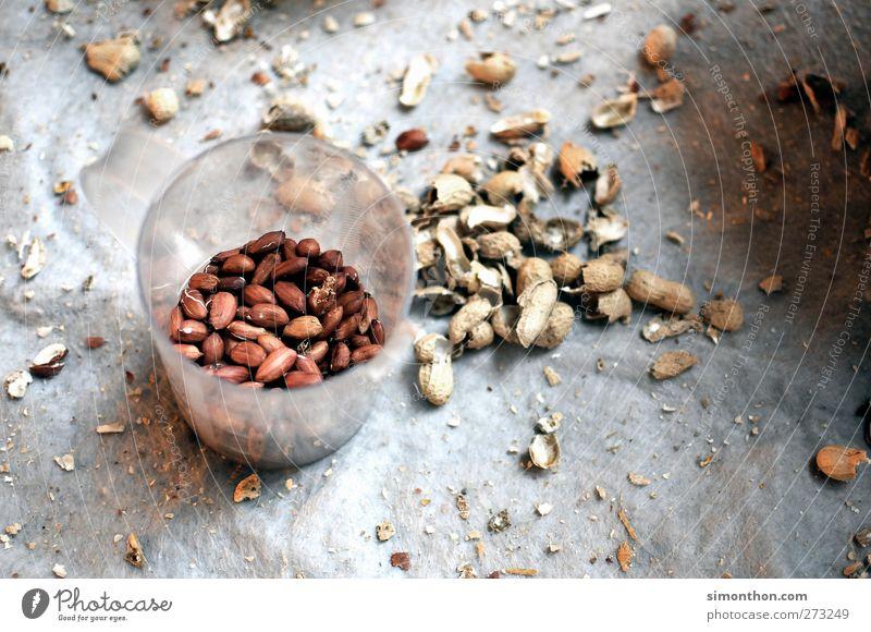 afrika Umwelt natürlich Nuss Nussknacker Nussschale nußbraun Hülle Behälter u. Gefäße brechen Ernährung Afrika Armut Dritte Welt Fett Sand Erdnuss Erdnussernte