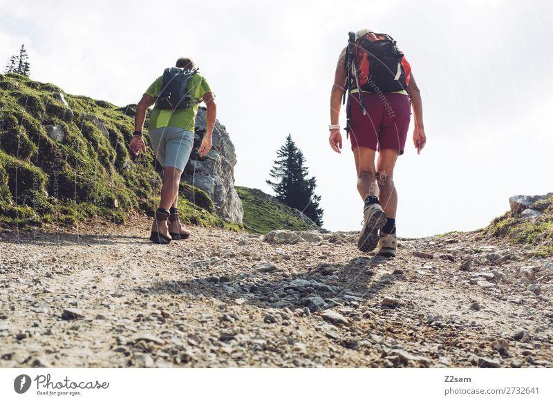 Sportliche Rentner beim Wandern Freizeit & Hobby Sommer Berge u. Gebirge wandern Weiblicher Senior Frau Männlicher Senior Mann Partner 60 und älter Natur