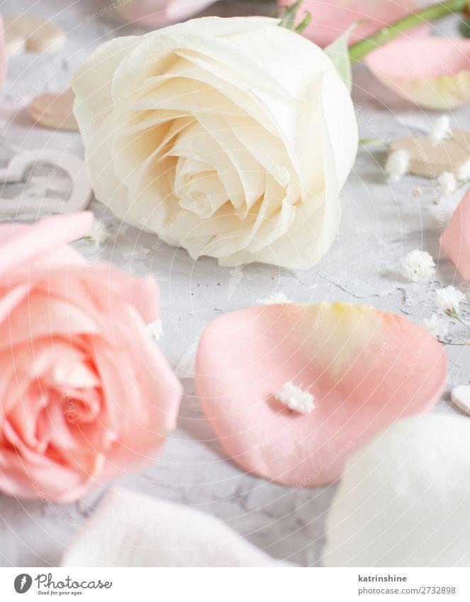 Rosa und cremefarbene Rosen mit Herzen schön Dekoration & Verzierung Valentinstag Hochzeit Handwerk Frau Erwachsene Blume Blüte Holz klein grau neutral Pastell