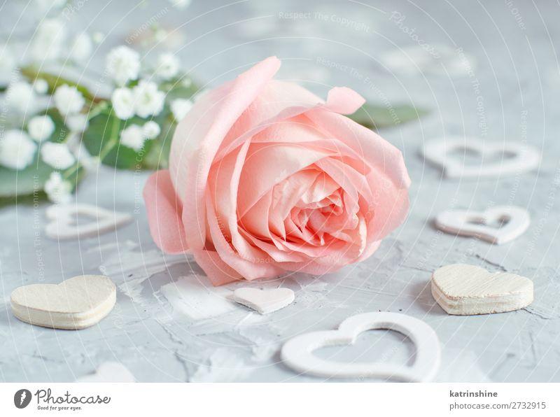 Rosa Rose mit Herzen schön Dekoration & Verzierung Valentinstag Hochzeit Handwerk Frau Erwachsene Blume Blüte Holz klein grau neutral Pastell romantisch