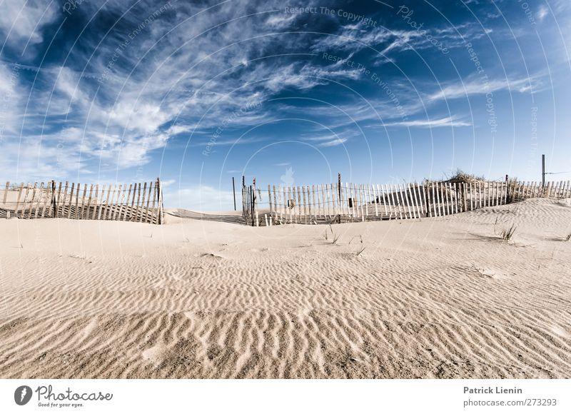 ein wenig Hiddensee Himmel Natur Ferien & Urlaub & Reisen Pflanze Sommer Sonne Meer Einsamkeit Landschaft Wolken Strand Ferne Umwelt Küste Gesundheit Freiheit