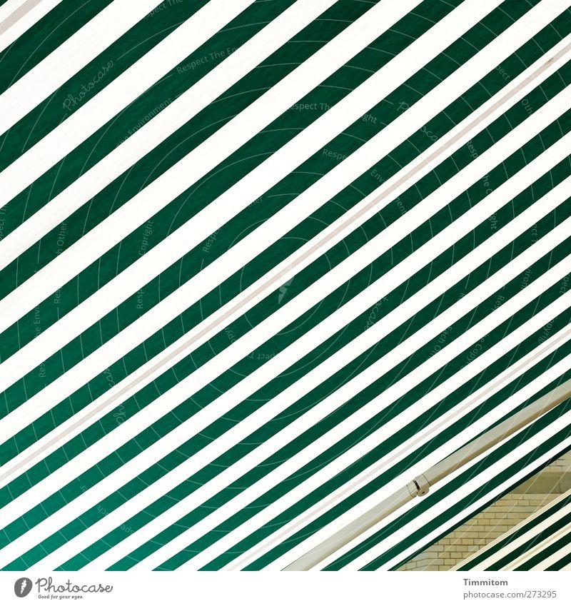 Ein Stück vom Haus. Stadt Mauer Wand Blick warten grün weiß Schutz Markise weit Linie Streifen Farbfoto Außenaufnahme Menschenleer Tag