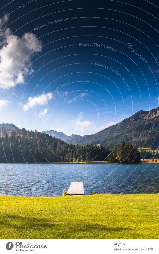 Spitzingsee Ferien & Urlaub & Reisen Sommer Sommerurlaub Berge u. Gebirge Landschaft Wasser Himmel Wolken blau grün rein See Seeufer Natur Bergwald Wiese Idylle