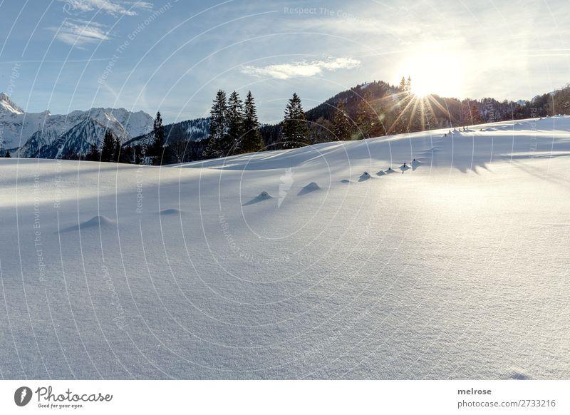 Schneelandschaft mit Sonnentiefstand Winter Winterurlaub Berge u. Gebirge wandern Brandnertal Natur Landschaft Himmel Wolken Sonnenlicht Schönes Wetter Eis