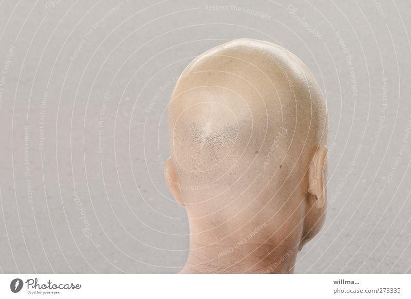 Glatzköpfiger Mann von hinten. Haarspitzenkontrolle Erwachsene Kopf Ohr Hals 1 Mensch Haare & Frisuren Glatze hell Hinterkopf Wegsehen Hintergrund neutral