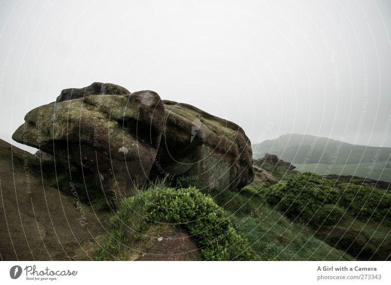 lizard Umwelt Natur Landschaft Urelemente Himmel Wolken Frühling Klima schlechtes Wetter Nebel Regen Hügel Felsen Berge u. Gebirge Gipfel frei natürlich trist
