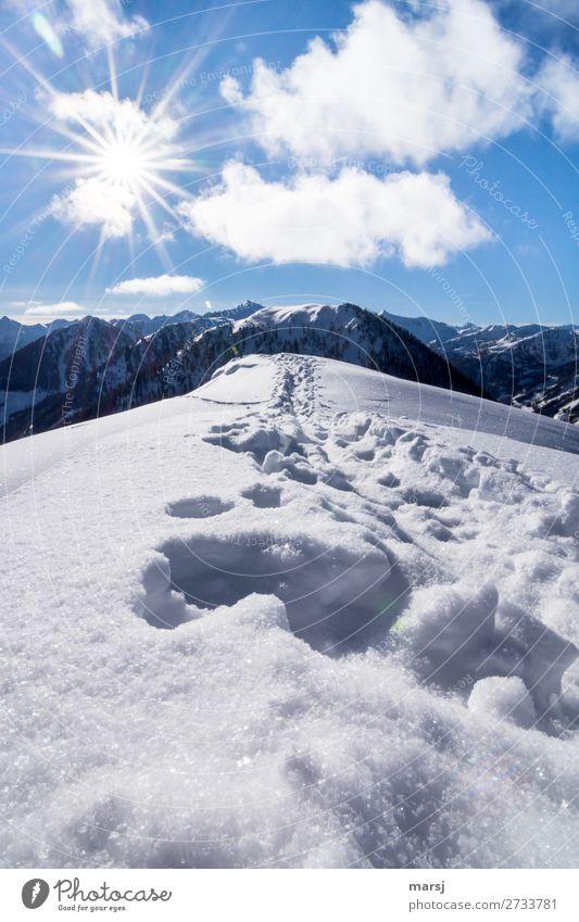 Abkühlung am Berg harmonisch Erholung ruhig Ferien & Urlaub & Reisen Tourismus Ausflug Abenteuer Freiheit Winter Schnee Berge u. Gebirge wandern Natur