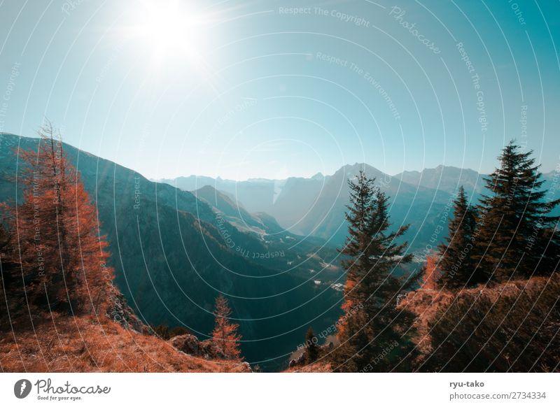 Berchtesgadener Land Natur Pflanze Landschaft Baum ruhig Berge u. Gebirge Herbst Wärme See oben Zufriedenheit wandern Aussicht Unendlichkeit Gelassenheit
