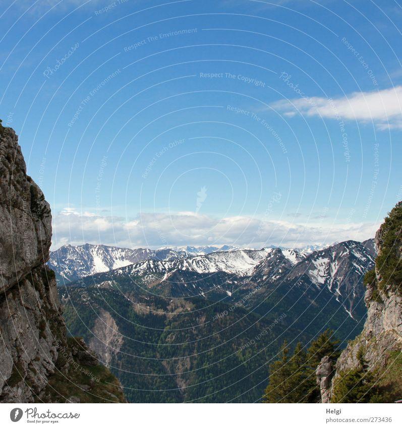 tolle Aussicht... Himmel Natur blau Ferien & Urlaub & Reisen weiß grün Baum Pflanze Wolken Umwelt Ferne Landschaft Berge u. Gebirge Frühling grau Stimmung