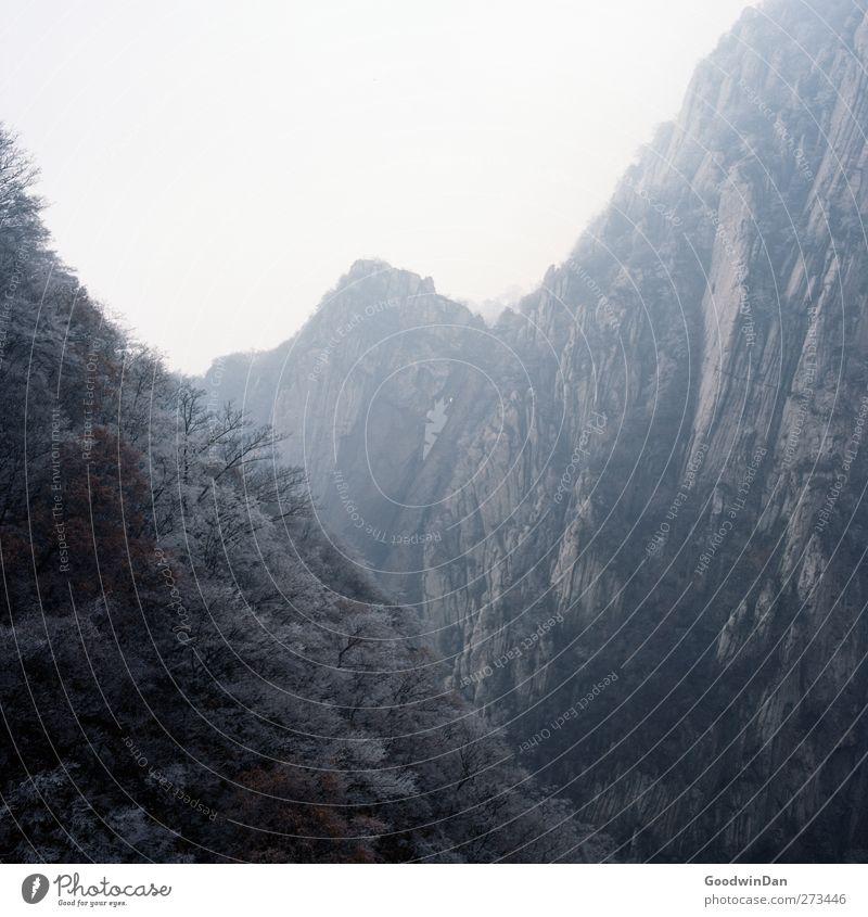 Into the wilderness. Natur Winter Umwelt kalt Berge u. Gebirge Eis Felsen Wetter Klima Nebel groß authentisch Frost Hügel Unendlichkeit gigantisch