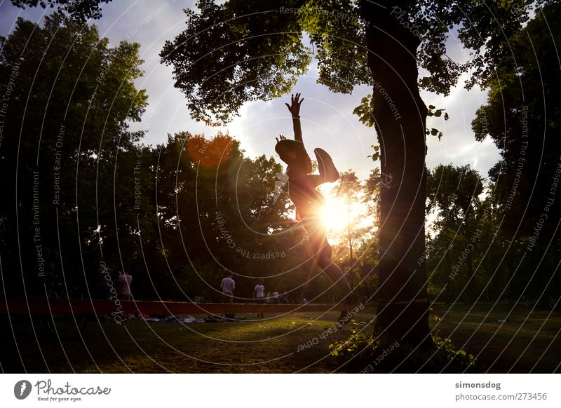 linejump Mensch Junger Mann Jugendliche Leben 1 Sonne Baum Park springen Freude Freizeit & Hobby Funsport Sommer Wiese leuchten Leichtigkeit Slackliner