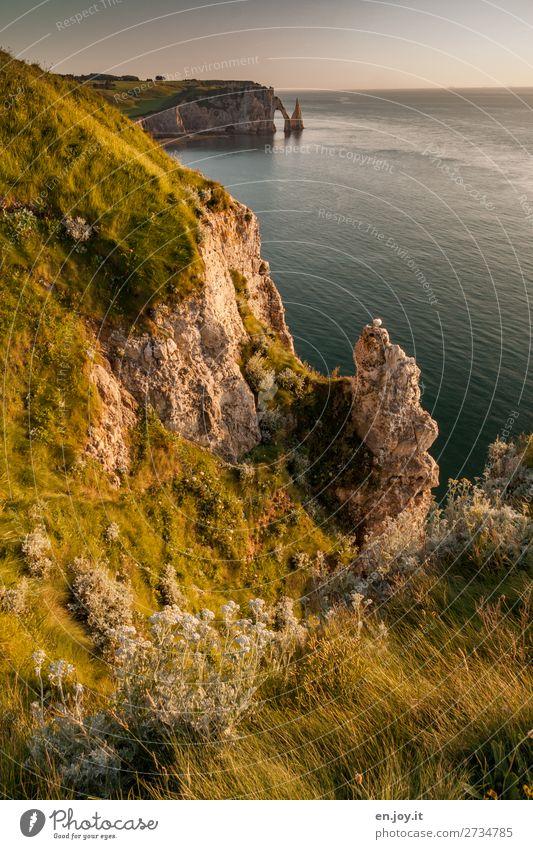 abwärts Ferien & Urlaub & Reisen Ausflug Ferne Sommer Sommerurlaub Meer Natur Landschaft Himmel Horizont Schönes Wetter Gras Sträucher Felsen Küste Bucht Klippe