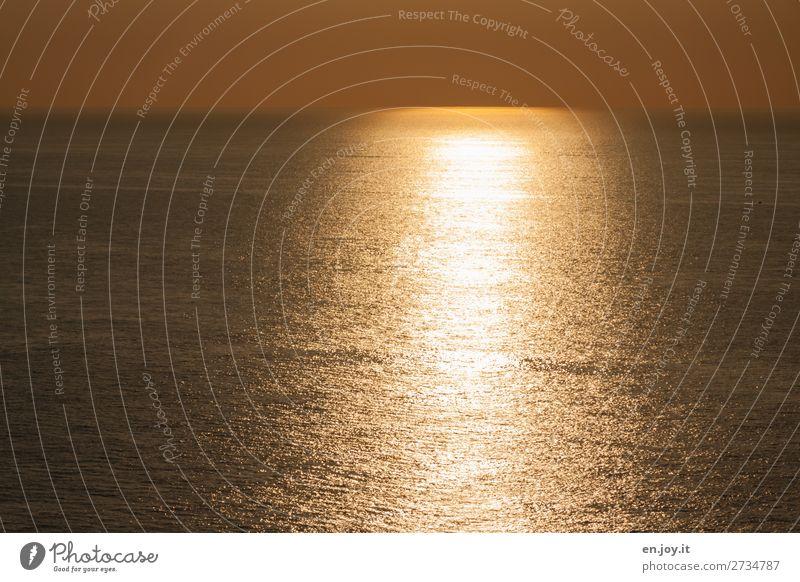 noch ein güldenes Ferien & Urlaub & Reisen Natur Sommer Sonne Meer ruhig Wärme gelb Traurigkeit orange Horizont gold Schönes Wetter Klima Hoffnung Trauer