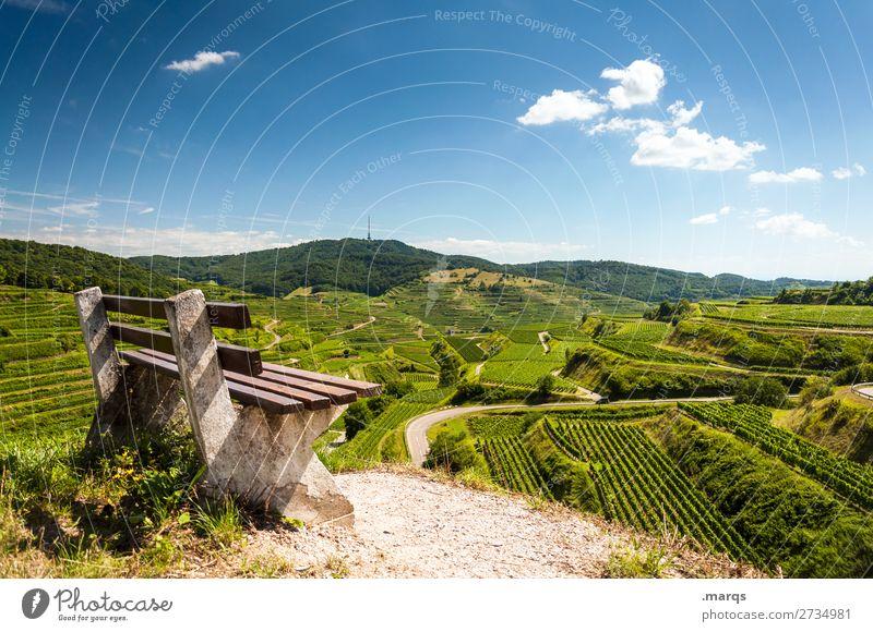 Kaiserstuhl wandern Landschaft Sommer Schönes Wetter Wein Terrassenfelder Bank Erholung natürlich Natur Pause Farbfoto Außenaufnahme Menschenleer