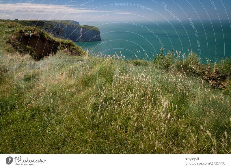 Grasland Ferien & Urlaub & Reisen Ausflug Ferne Sommer Sommerurlaub Meer Natur Landschaft Pflanze Erde Horizont Schönes Wetter Wiese Felsen Küste Klippe