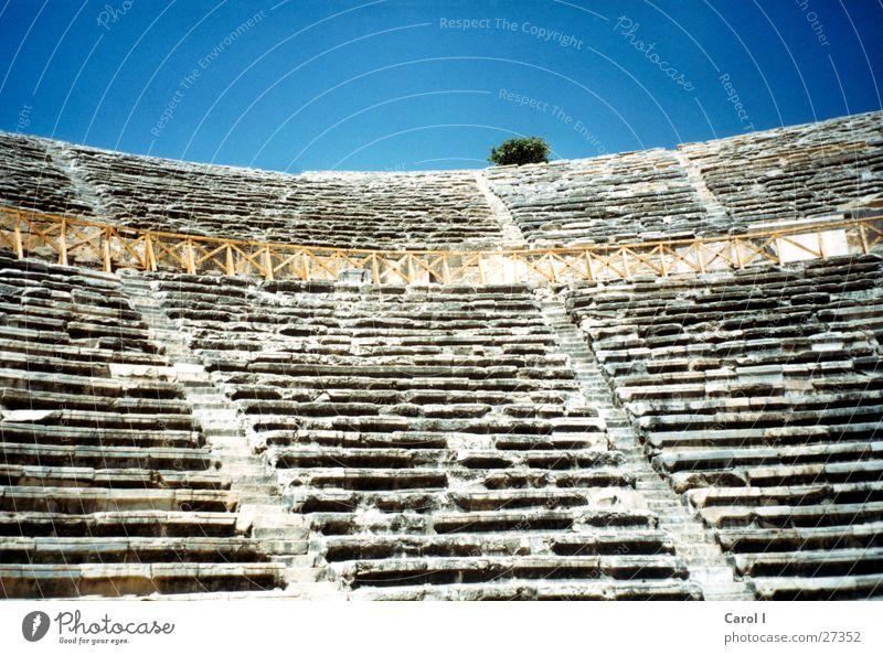 Amphitheater Himmel Pflanze Ferien & Urlaub & Reisen grau Stein Erfolg Europa Treppe Macht Sträucher Rom Italien Denkmal Vergangenheit Reihe historisch