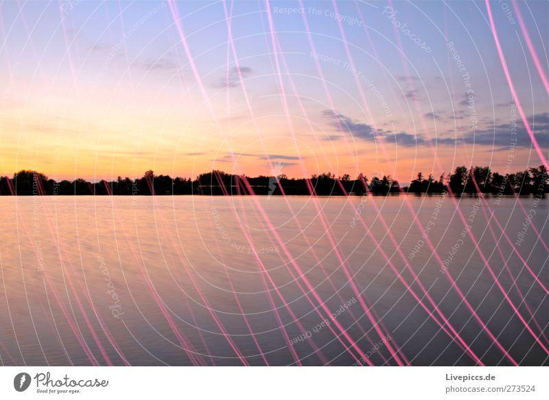 Müritzarm Kunst Maler Umwelt Natur Wasser Himmel Wolken Sonne Sonnenaufgang Sonnenuntergang Sonnenlicht Sommer Schönes Wetter Pflanze Baum Küste Seeufer Strand